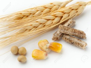7818706-macro-shot-of-corn-wheat-soy-beans-and-wood-pellets-shot-on-white-background-with-soft-shadow-Stock-Photo